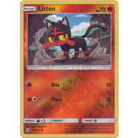 Litten 24/149 SM Base Set Reverse Holo Common Pokemon Card NEAR MINT TCG