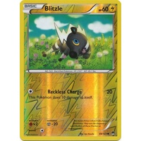 Blitzle 48/122 XY Breakpoint Reverse Holo Common Pokemon Card NEAR MINT TCG