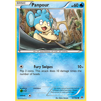 Panpour 41/162 XY Breakthrough Common Pokemon Card MINT TCG