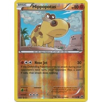 Hippopotas 83/162 XY Breakthrough Reverse Holo Common Pokemon Card MINT TCG