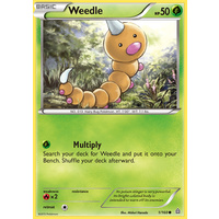 Weedle 1/160 XY Primal Clash Common Pokemon Card NEAR MINT TCG