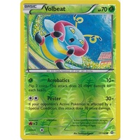 Volbeat 17/160 XY Primal Clash Reverse Holo Common Pokemon Card NEAR MINT TCG