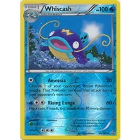 Whiscash 40/160 XY Primal Clash Reverse Holo Uncommon Pokemon Card NEAR MINT TCG