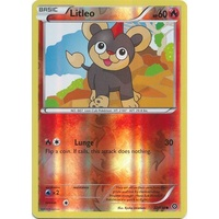 Litleo 22/114 XY Steam Siege Reverse Holo Common Pokemon Card NEAR MINT TCG