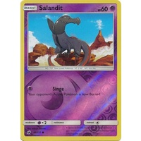 Salandit 46/111 SM Crimson Invasion Reverse Holo Common Pokemon Card MINT TCG