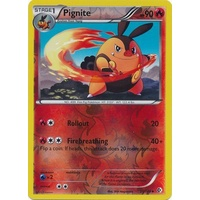 Pignite 25/149 BW Boundaries Crossed Reverse Holo Uncommon Pokemon Card NEAR MINT TCG