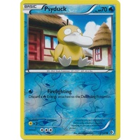 Psyduck 33/149 BW Boundaries Crossed Reverse Holo Common Pokemon Card NEAR MINT TCG