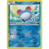Marill 36/149 BW Boundaries Crossed Reverse Holo Common Pokemon Card NEAR MINT TCG