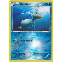 Ducklett 42/149 BW Boundaries Crossed Reverse Holo Common Pokemon Card NEAR MINT TCG