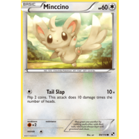 Minccino 88/114 BW Base Set Common Pokemon Card NEAR MINT TCG