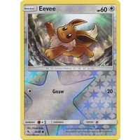 Eevee 49/68 SM Hidden Fates Reverse Holo Common Pokemon Card NEAR MINT TCG