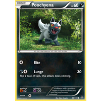 Poochyena 53/119 XY Phantom Forces Common Pokemon Card NEAR MINT TCG