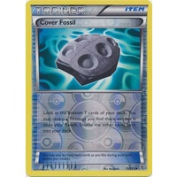 Cover Fossil 79/101 BW Plasma Blast Reverse Holo Uncommon Trainer Pokemon Card NEAR MINT TCG