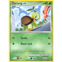 Turtwig 17/17 POP Series 6 Common Pokemon Card NEAR MINT TCG