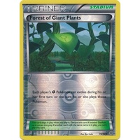 Forest of Giant Plants 74/98 XY Ancient Origins Reverse Holo Uncommon Trainer Pokemon Card NEAR MINT TCG