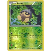 Seedot 5/106 XY Flashfire Reverse Holo Common Pokemon Card NEAR MINT TCG
