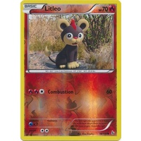 Litleo 18/106 XY Flashfire Reverse Holo Common Pokemon Card NEAR MINT TCG
